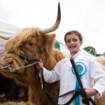 Perth Show…06.08.16 9 year old Sophie Adams Highland Cow 'Una'.   Best first time exhibitor and handler winner Picture by Graeme Hart. Copyright Perthshire Picture Agency Tel: 01738 623350  Mobile: 07990 594431