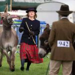 Perth Show…06.08.16 Mrs Kendall Young struggles to hold onto her donkey 'Mr Fallon' in the showring Picture by Graeme Hart. Copyright Perthshire Picture Agency Tel: 01738 623350  Mobile: 07990 594431
