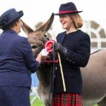 Perth Show…06.08.16 Mrs Kendall Young gets 1st prize from judge Joy Wilcox for her donkey 'Mr Fallon' Picture by Graeme Hart. Copyright Perthshire Picture Agency Tel: 01738 623350  Mobile: 07990 594431