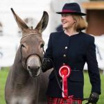 Perth Show…06.08.16 Mrs Kendall Young gets 1st prize for her donkey 'Mr Fallon' Picture by Graeme Hart. Copyright Perthshire Picture Agency Tel: 01738 623350  Mobile: 07990 594431