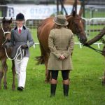 Perth Show…05.08.16 Christina Rettie and Hunter Foal Schiehallion approach judge Katrina Byrne Picture by Graeme Hart. Copyright Perthshire Picture Agency Tel: 01738 623350  Mobile: 07990 594431