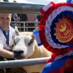 Perth Show…06.08.16 Ian Reid from Isle Cottage, Methven with his Champion Beltex 1 crop Ewe Picture by Graeme Hart. Copyright Perthshire Picture Agency Tel: 01738 623350  Mobile: 07990 594431