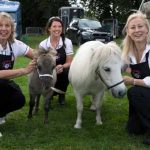 Perthshire On A Plate….06.08.16  Maureen Young, Kathy and Vicki Unite with Shetland ponies Picture by Graeme Hart. Copyright Perthshire Picture Agency Tel: 01738 623350  Mobile: 07990 594431
